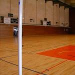 voleibol-vpf02